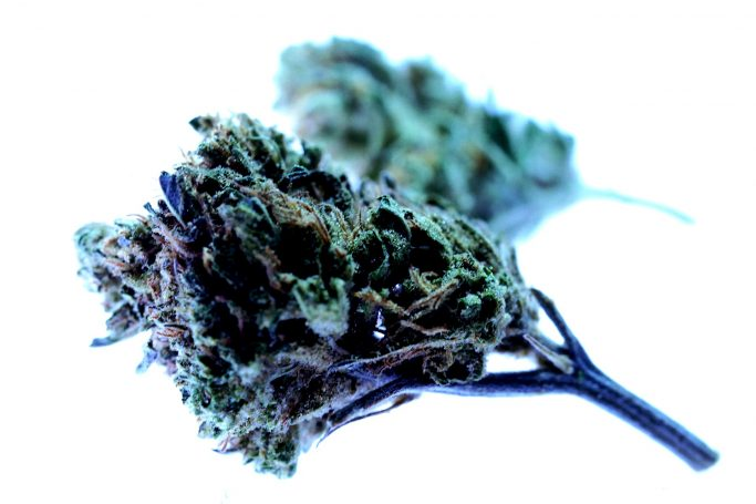 Medical cannabis given boost by UN vote